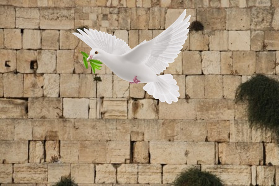 Parshas Yisro: Would You Throw Mud at the Kosel?