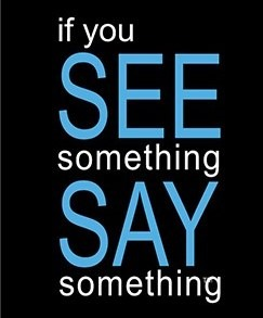 Parshas Pinchas: If You See Something, Say Something!
